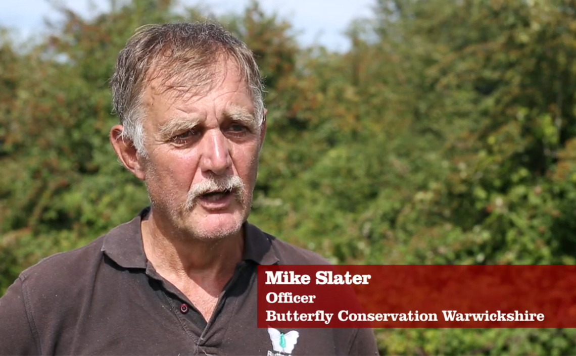 Mike Slater, Chairman of the Warwickshire Branch of Butterfly Conservation talks about the butterflies of Fenny Compton.