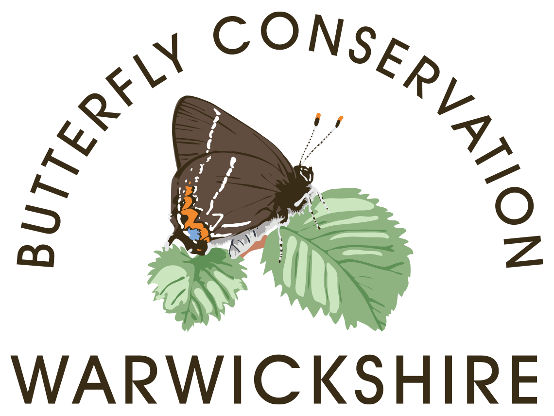 Butterfly Conservation Warwickshire